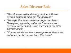 day plan template first days as sales director sample