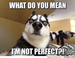 animal alphabet letters frabz what do you mean im not perfect a large