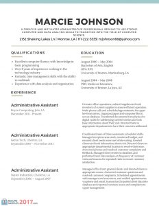 basic resume template word professional resume examples with basic resume template