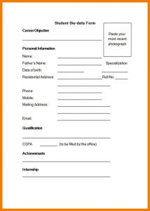 blank balance sheet biodata form sample m form