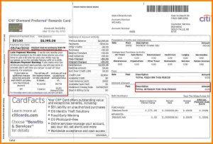 blank financial statement citi bank credit card statement citi cc statement