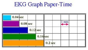 blank graph chart