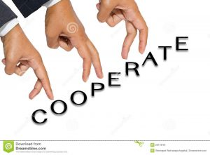 business partnership contract cooperate