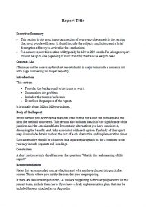 business report format report template image