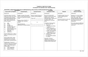 care plan template free download nursing care plan guide pdf
