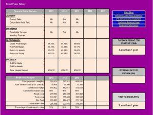 cash flow analysis template sample business plan presentation