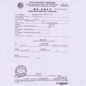 certificate of service template f eed dc b faeb