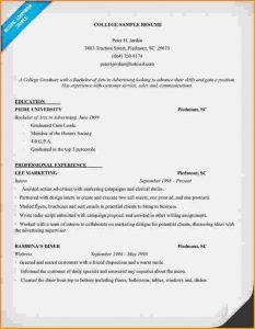 college freshman resume template freshman college student resume college resume sample