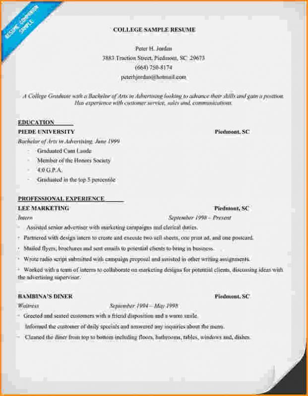college freshman resume template