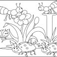 coloring pages pdf insects pleased with spring day coloring pages for kids ds spring coloring pages printable pdf spring coloring pages printable activities