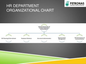 company flow chart petronas fertilizers sdn bhd shrm