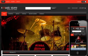 cool website templates music store future