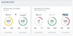 credit report sample nav dashboard