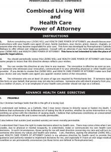 custody agreement template pennsylvania combined living will and health care power of attorney form