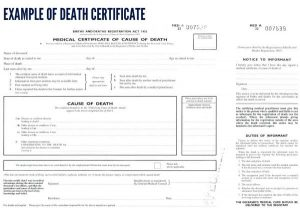 death certificate template blank example of death certificate x