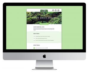 design portfolio template design cont email template desktop