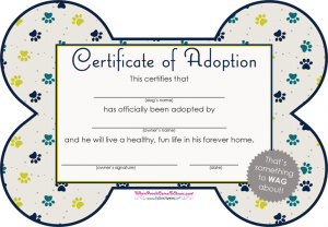 dj contract templates pet adoption certificate