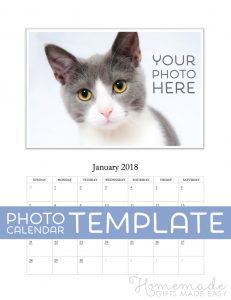 download birthday cards xphoto calendar template january cat labelled x jpg pagespeed ic kszlgxc q