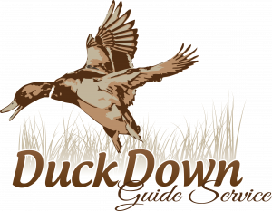 duck hunting logos duck down guide service logo