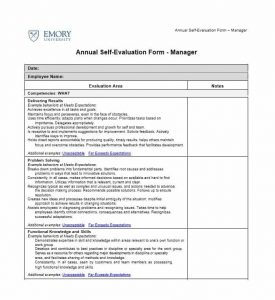 employee evaluation samples self evaluation examples