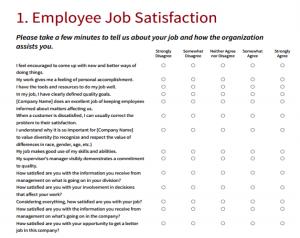 employee satisfaction survey employee satisfaction