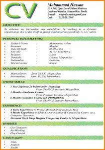 employment agreement sample simple cv format for job