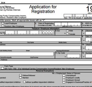 employment application forms bir form x