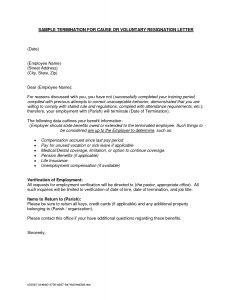 employment offer letter templates employment separation letter sample regarding letter of employment sample template