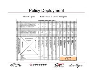 environmental policy example policy deployment example