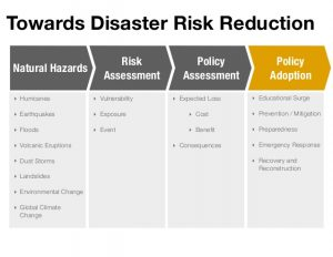 environmental policy example why do risk and disaster management matter