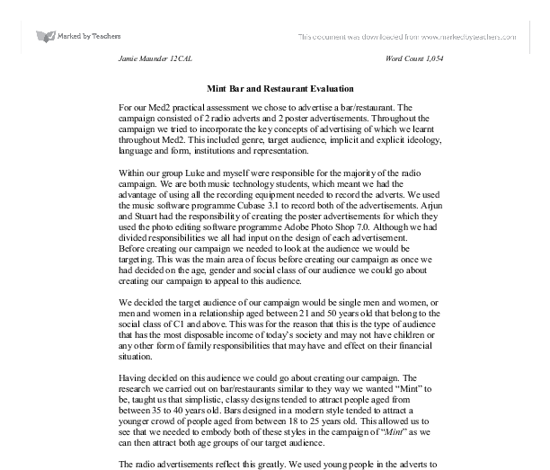 evaluation essay example  template business evaluation essay example