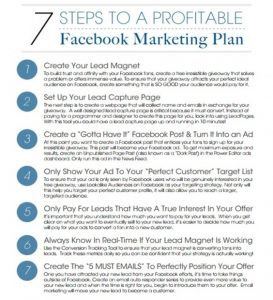 example business plans steps to a profitable facebook marketing plan x