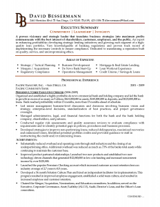 executive resume samples executive summary resume example with great template