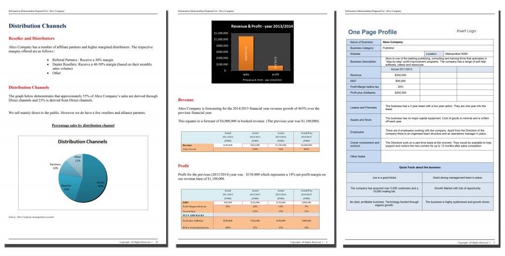 executive summary format example