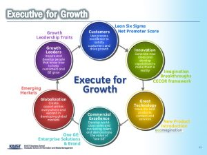 executive summary marketing plan ges growth strategy