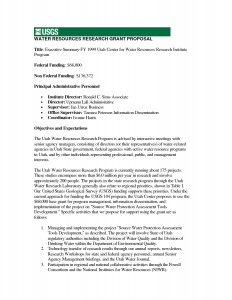 executive summary template for proposal grant proposal executive summary