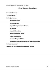 executive summary template word project management sample