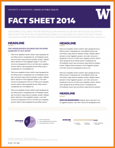 fact sheet design fact sheet design template factsheet template a screen