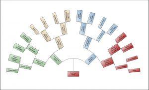 family tree chart maker fanchart reedsmall