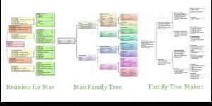 family tree chart maker family pedigree chart maker