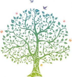 family tree design family tree designs