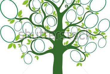 family tree design family tree vector