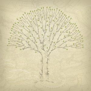family tree design legacyfamilytrees