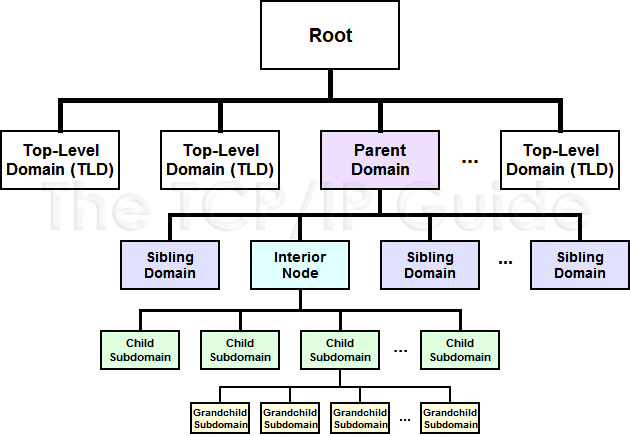 family tree diagram