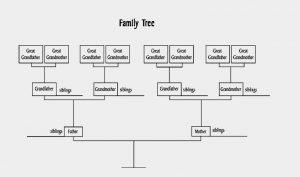 family tree diagram familytreediagram