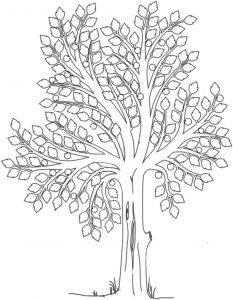 family tree for kids ffcc b