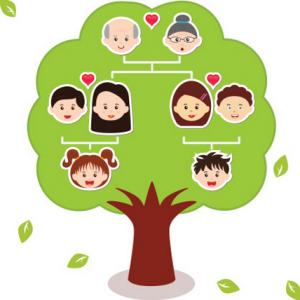 family tree for kids nieregot