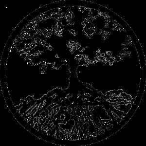 family tree outline nexus logo by mt dpv