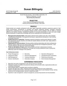 federal resume sample executive resume templates format of federal government resume