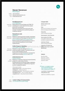federal resume template graphic designer resume sample best examples for fresher design templates x